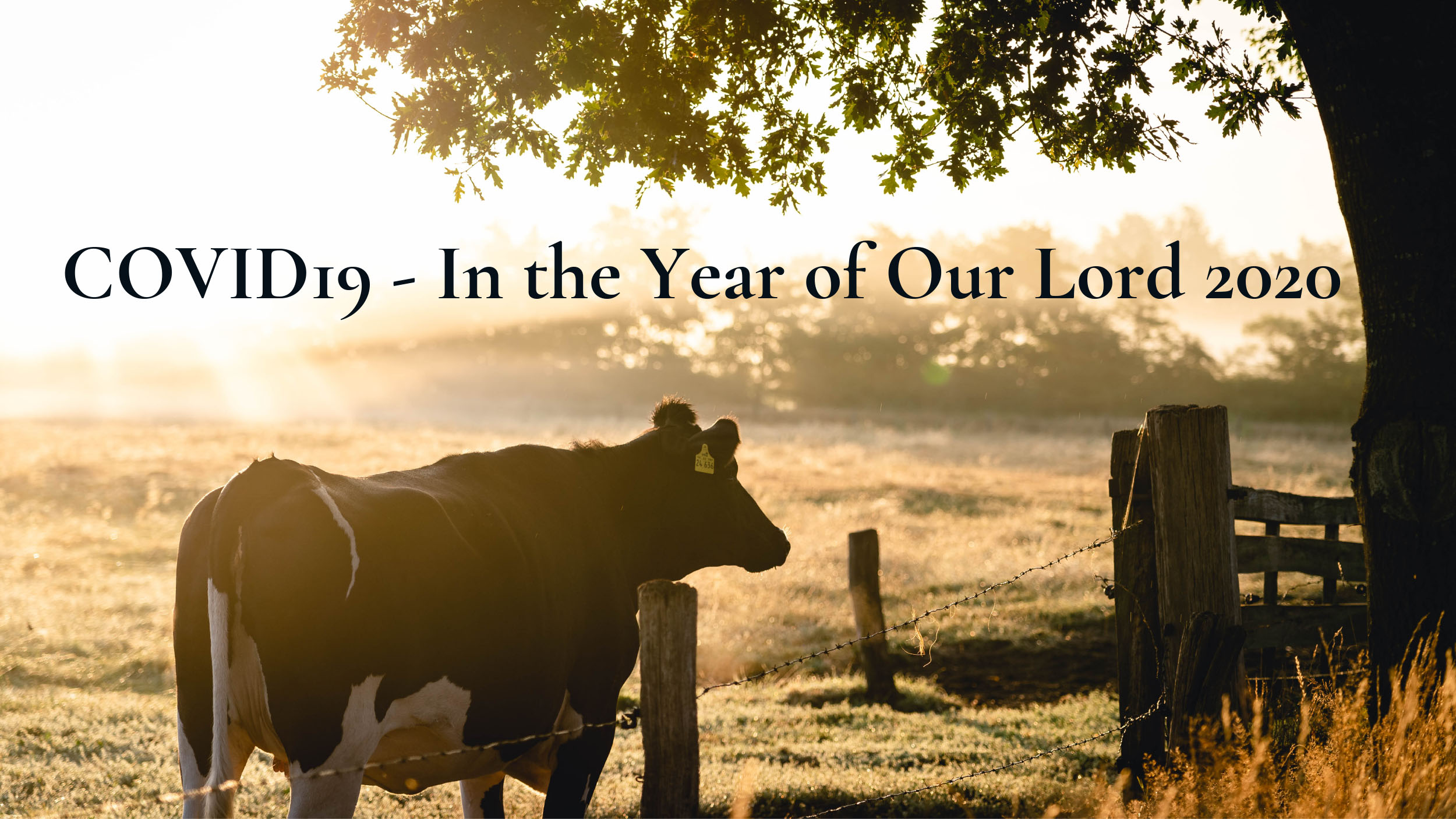 COVID19 – In the Year of Our Lord 2020