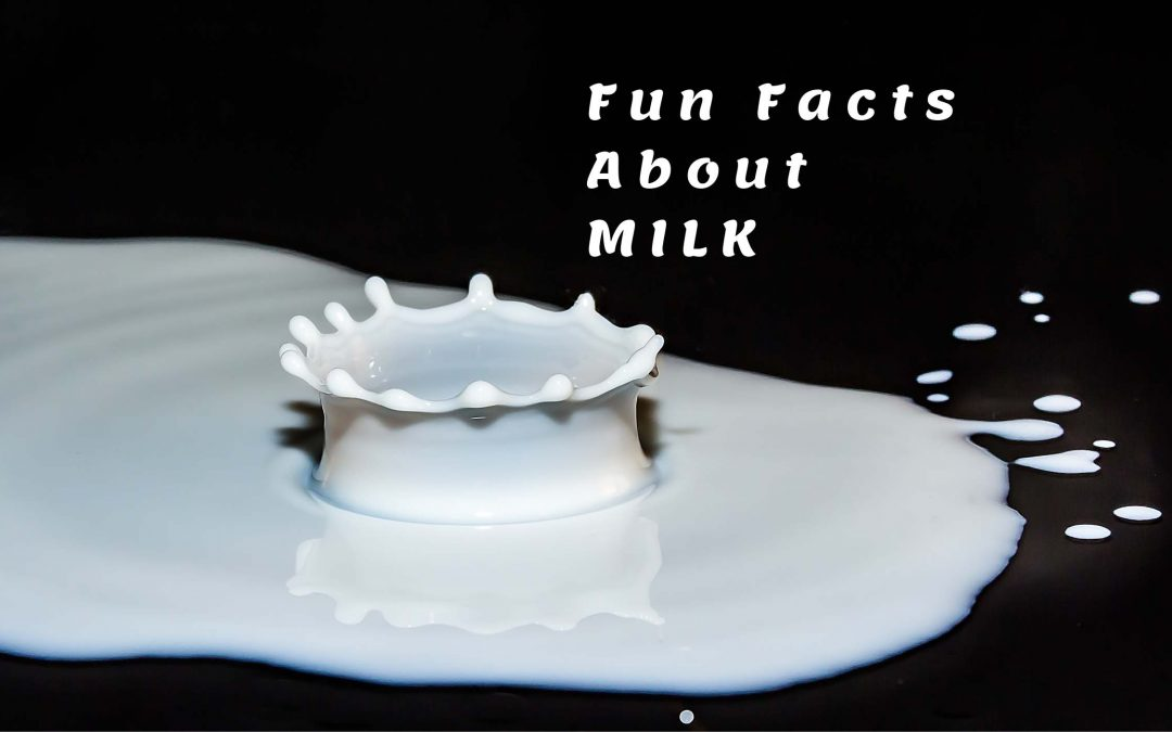 fun facts about milk