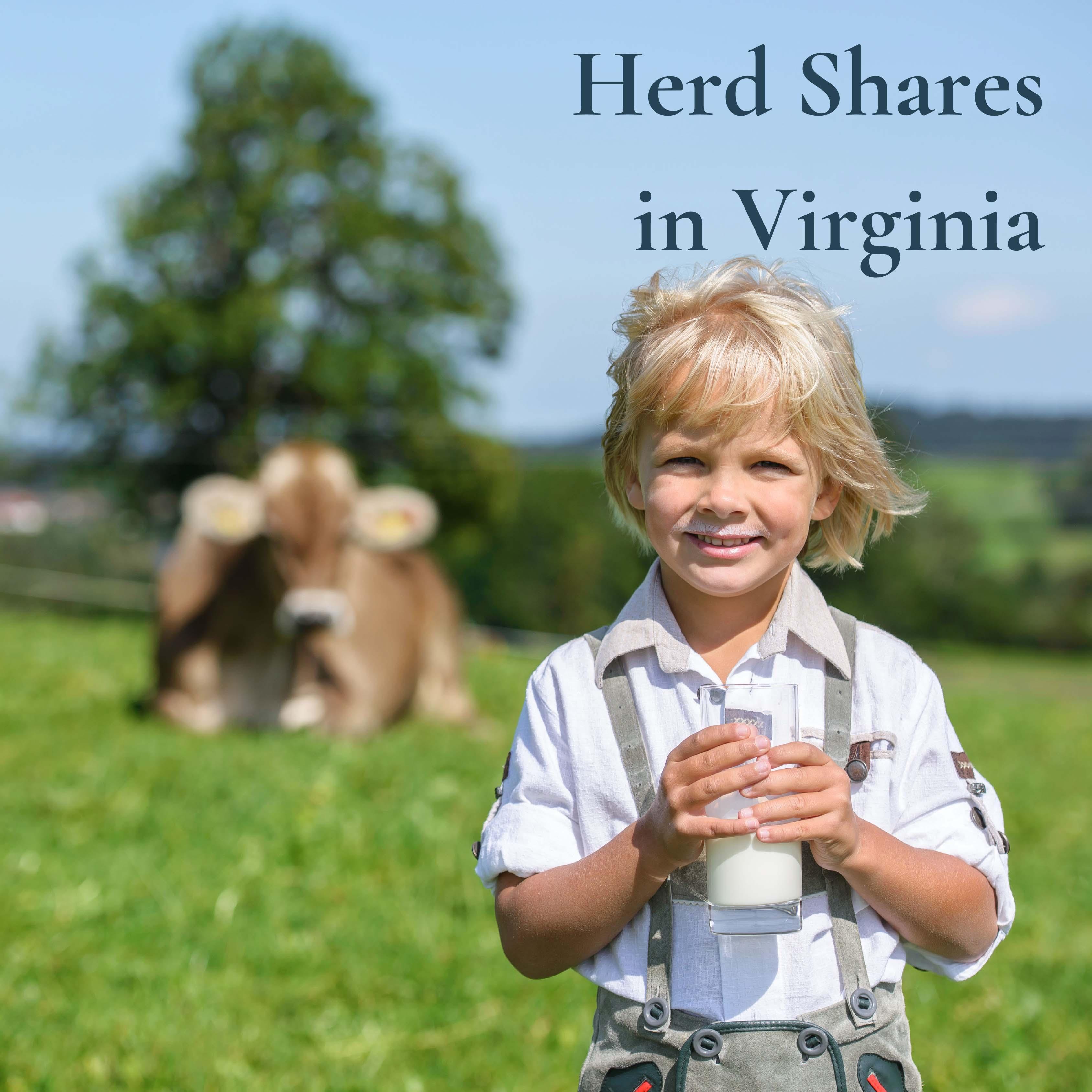 herd shares virginia