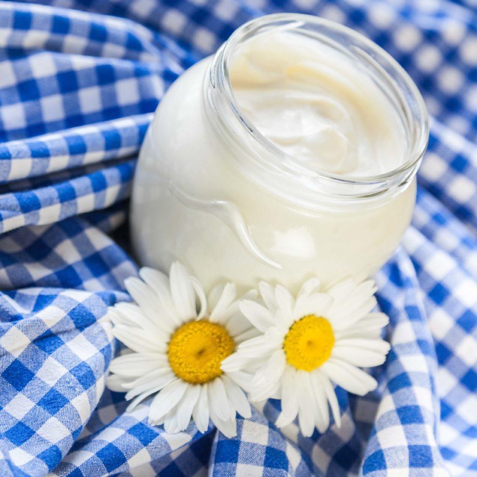 Home Made Yogurt