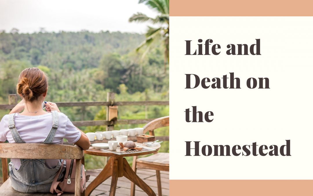 life and death on the homestead