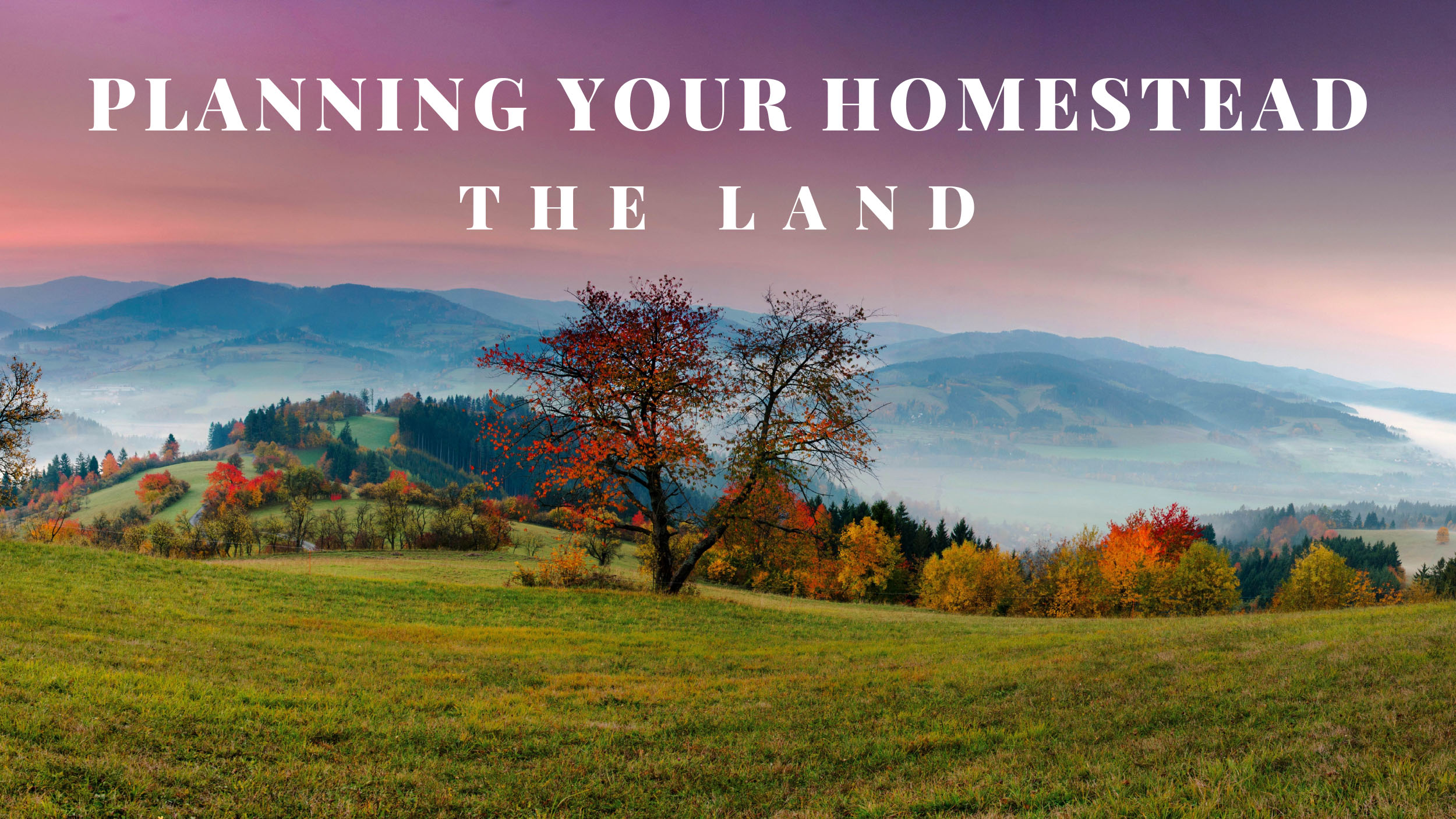 Planning Your Homestead – Land