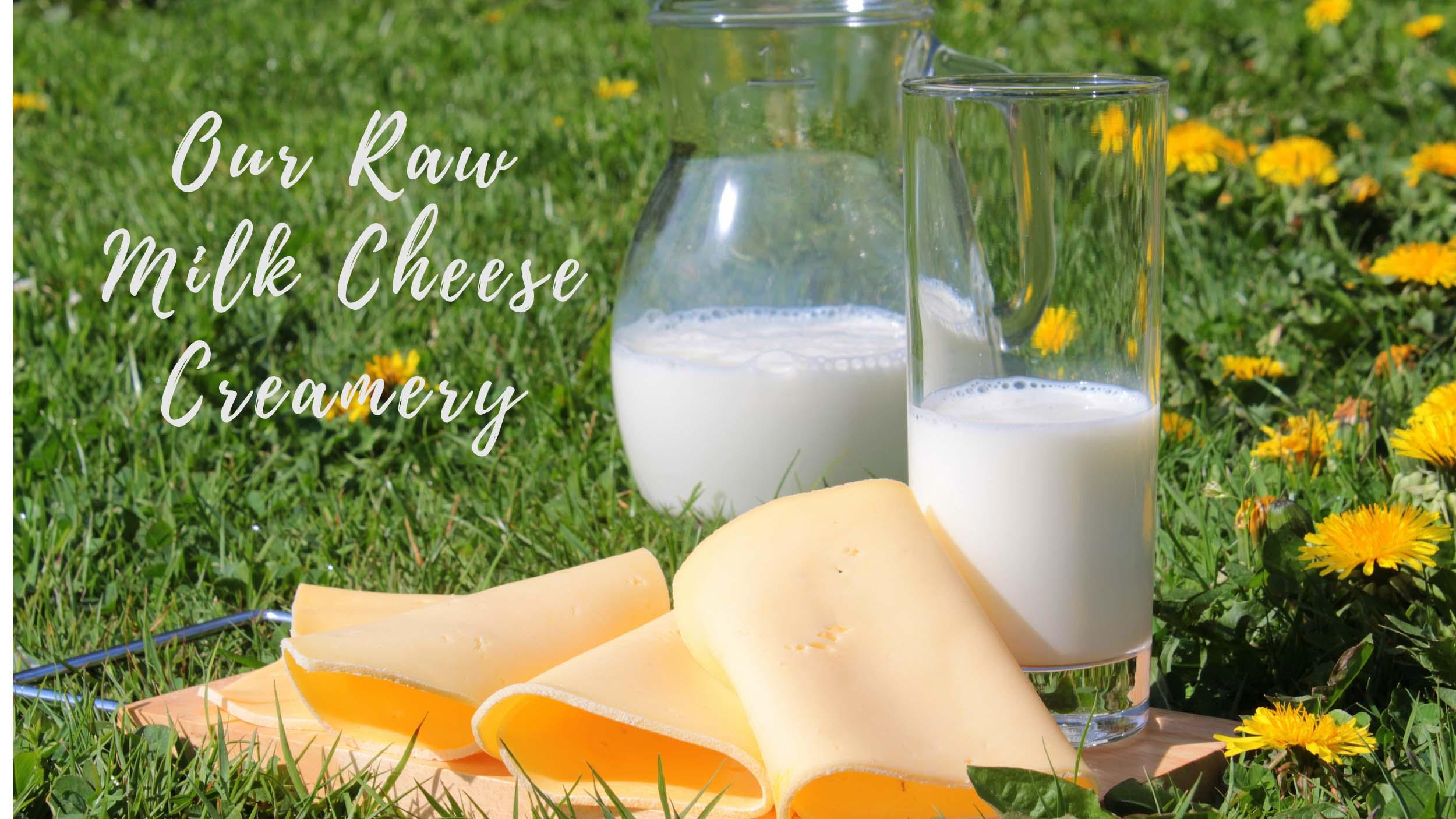 Our Raw Milk Cheese Creamery Progress
