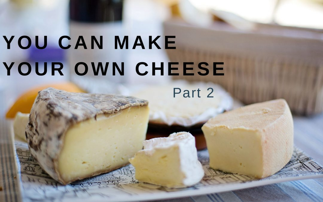 you can make your own cheese