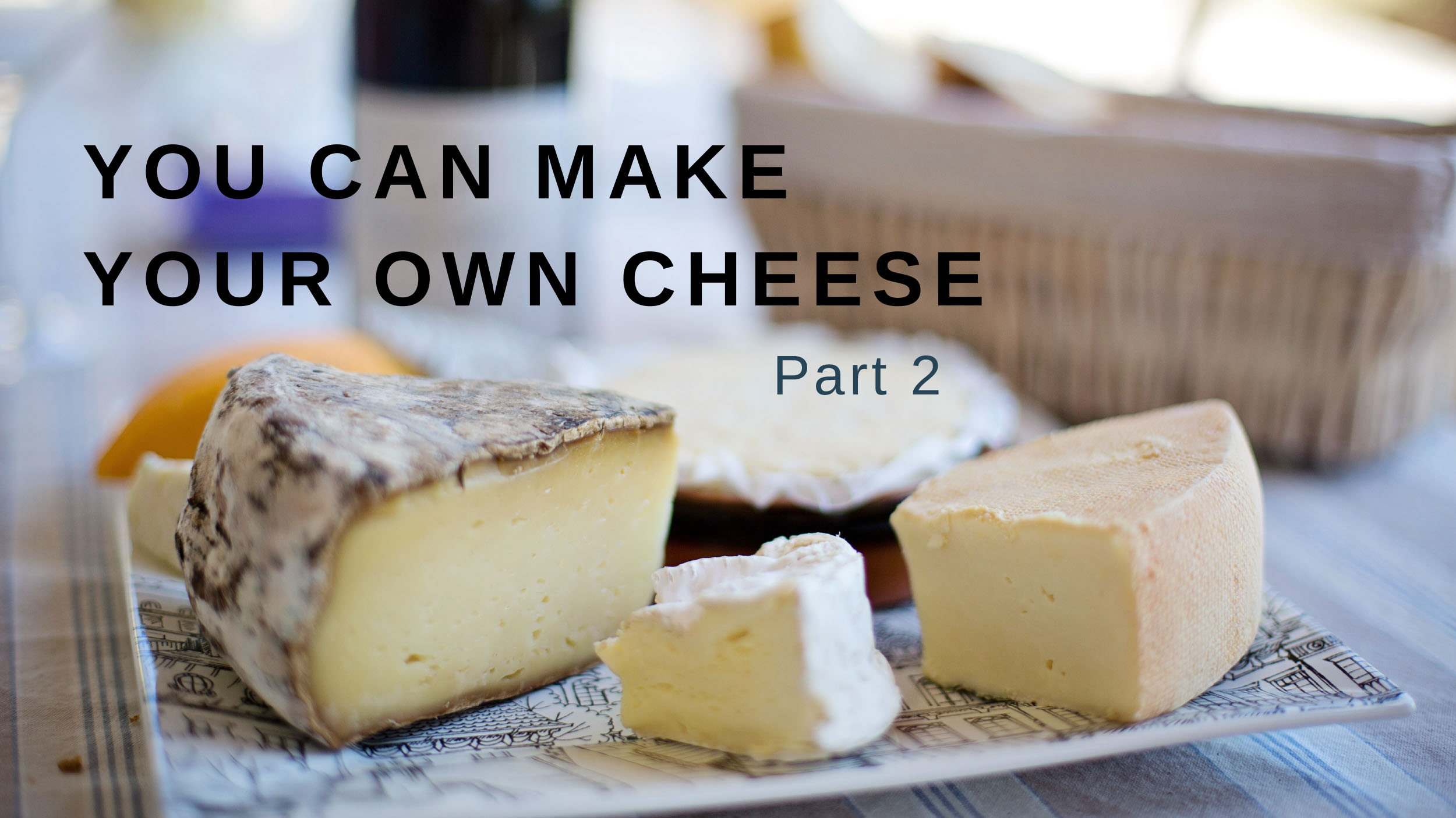 You Can Make Your Own Cheese – Part 2